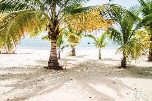 tokeh beach 1