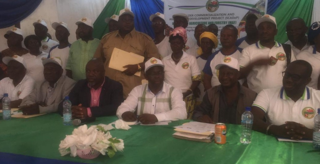 Sierra Leone agriculture minister launches agribusiness support service for farmers