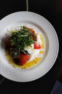 Buffalo Mozzarella & Tomato Harrys nyc