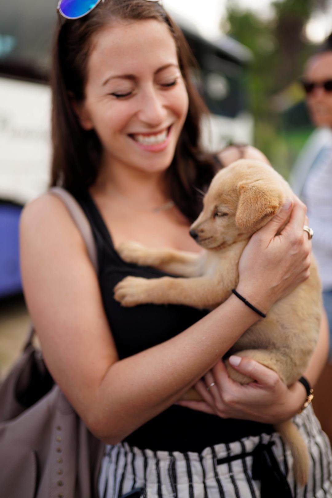 puppy skinnypignyc