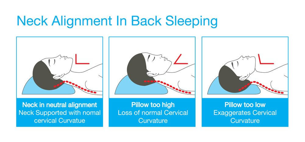 best pillows for back sleepers the