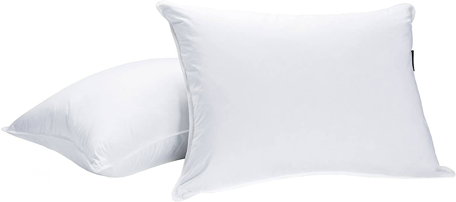 best goose down pillows 2021 the