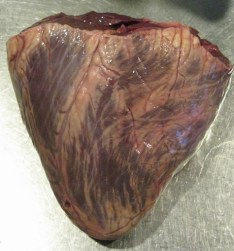 Beef heart from our dairy