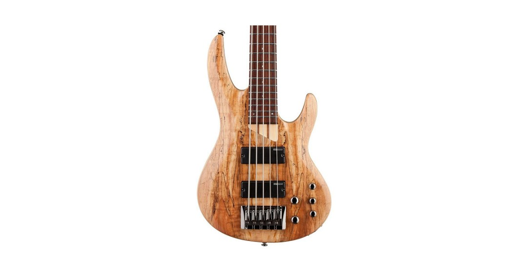 ESP LTD B Series B-205 Five-String Bass Guitar Gold Pick
