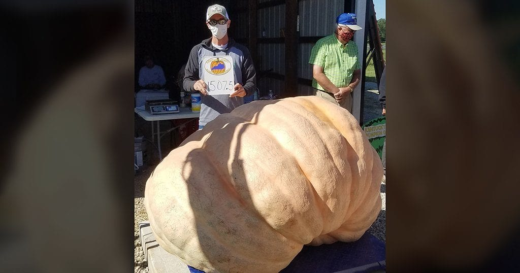 Wolf poses with his prize 1507-lb pumpkin at the Kentucky Giant Pumpkin Growers auction. Next stop... Dollywood! (photo contributed by Andy Wolf)