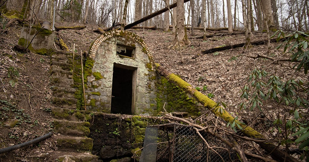 Fairy House in the Great Smoky Mountains National Park