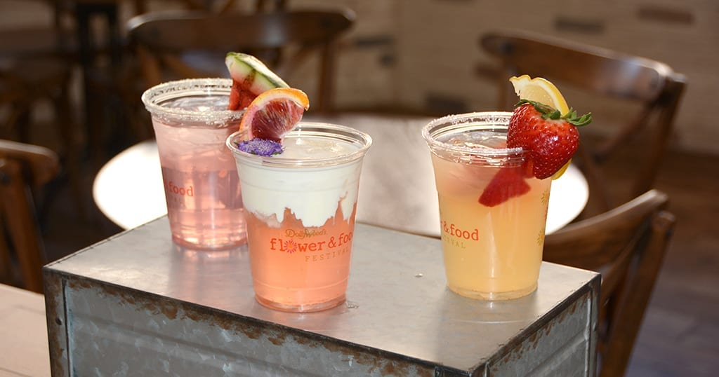 If we are being honest, we just had to find a place in the article for this amazing pic of Flower and Food Festival sample mocktails, this seemed like a good place in the article (photo by Daniel Munson/TheSmokies.com)