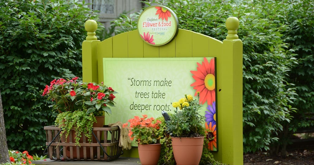 "A bench that says ""Storm make trees take deeper roots"""