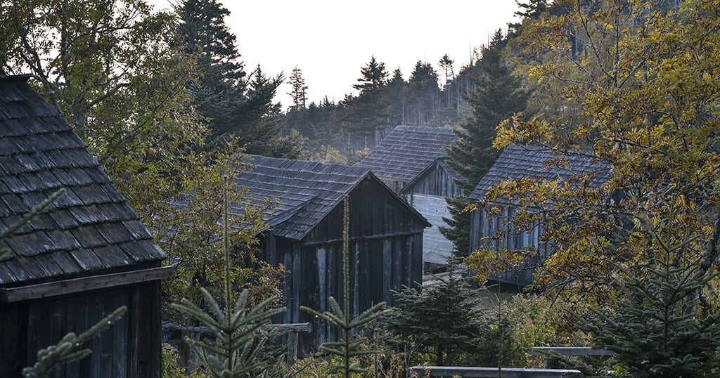 Mount Le Conte Lodge in Great Smoky Mountains National Park