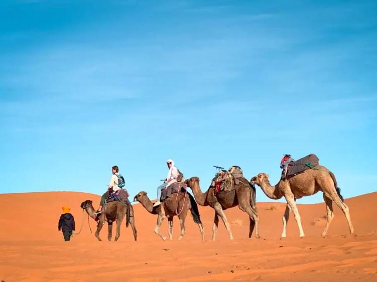 Camelback riding in Sahara desert in Merzouga