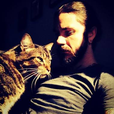 Bands with cats