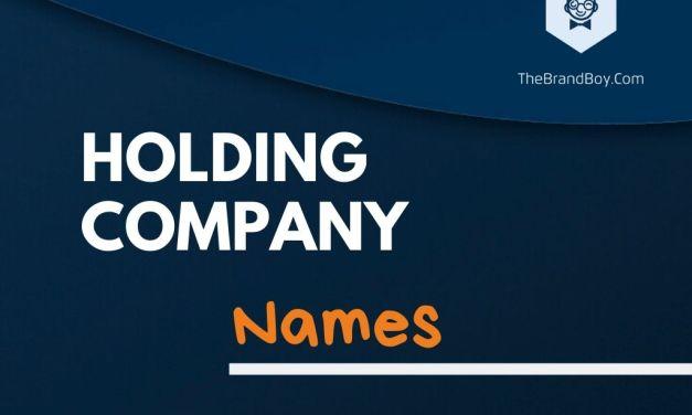 365+ Best Holding Company Names & Idea