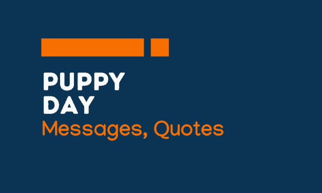 Puppy Day: 71+ Greetings, messages and quotes