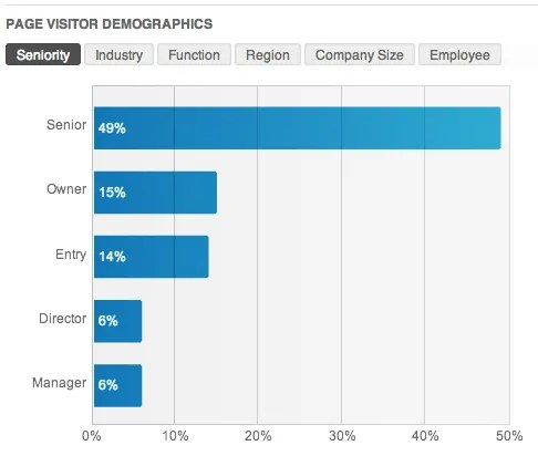 LinkedIn Page Visitor Demographics