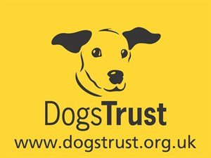 The Dogs Trust, The Solar People