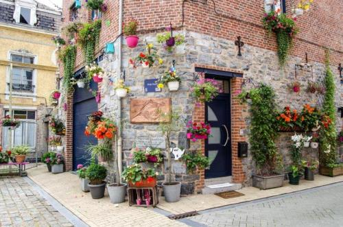 Beautiful street| Dinant, a little town in Belgium | The Solivagant Soul
