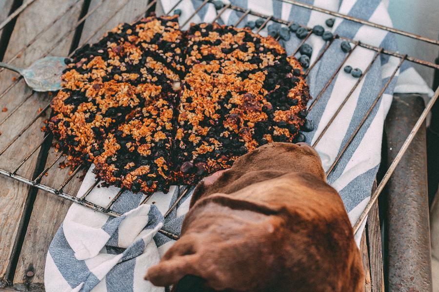 Rezept extraknusprige Heidelbeertarte mit Kokosblütenzucker vegan glutenfrei (4 von 7)