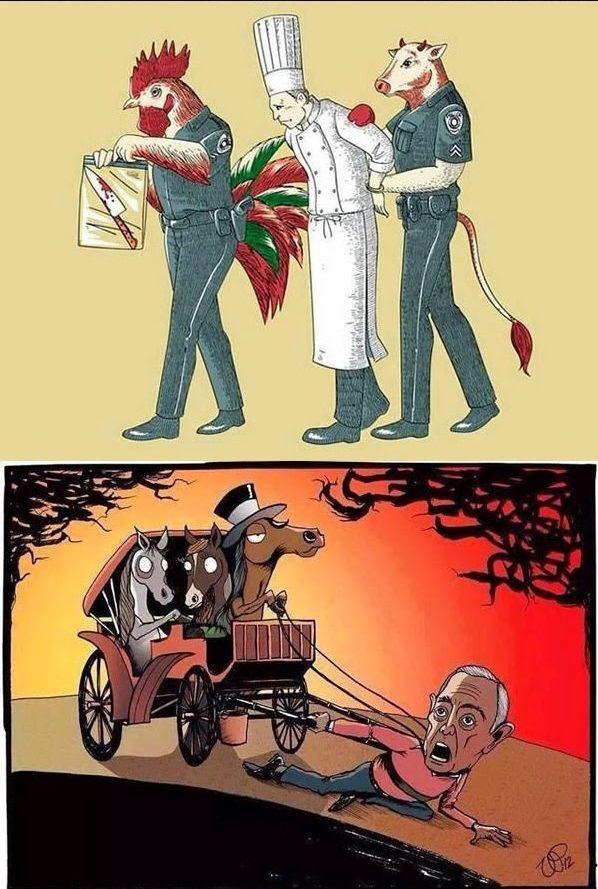 AnimalTreatment