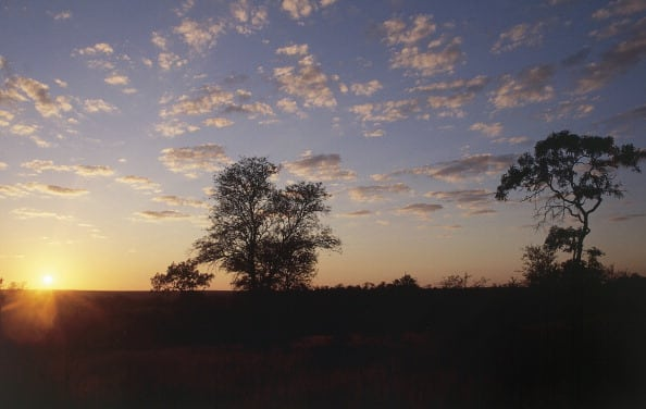 SOUTH AFRICA - CIRCA 2003: Sunrise, Kruger National Park, South Africa. (Photo by DeAgostini/Getty Images)