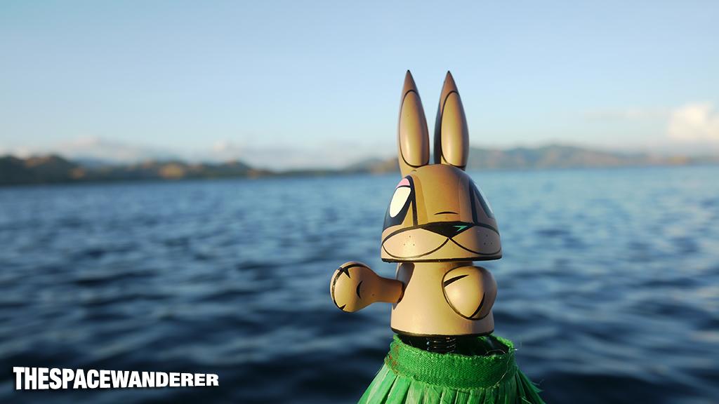 komodo-island-13-chaos-bunny