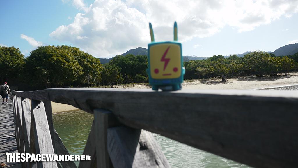 komodo-island-21-bridge