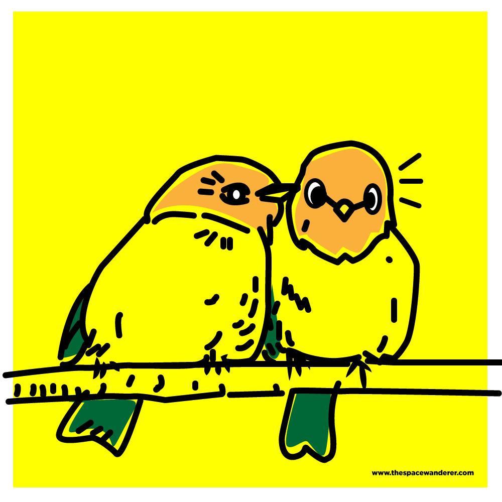 a couple of birds