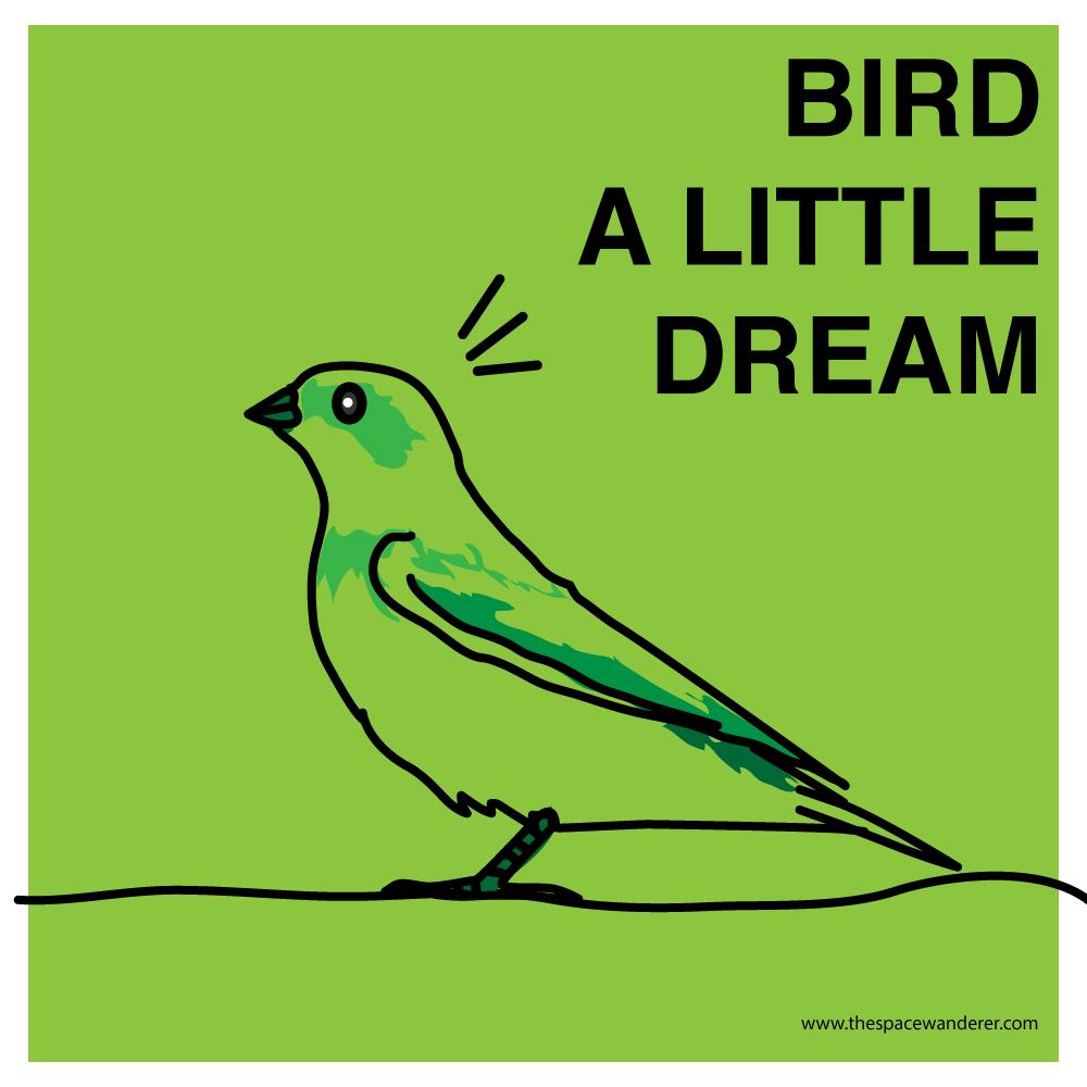 bird a little dream