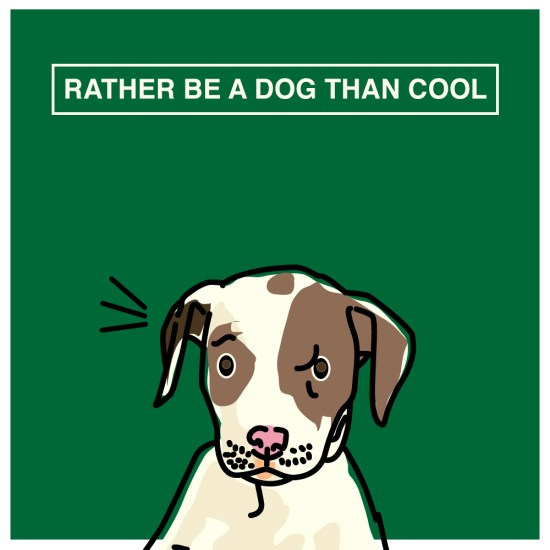 rather be a dog than cool