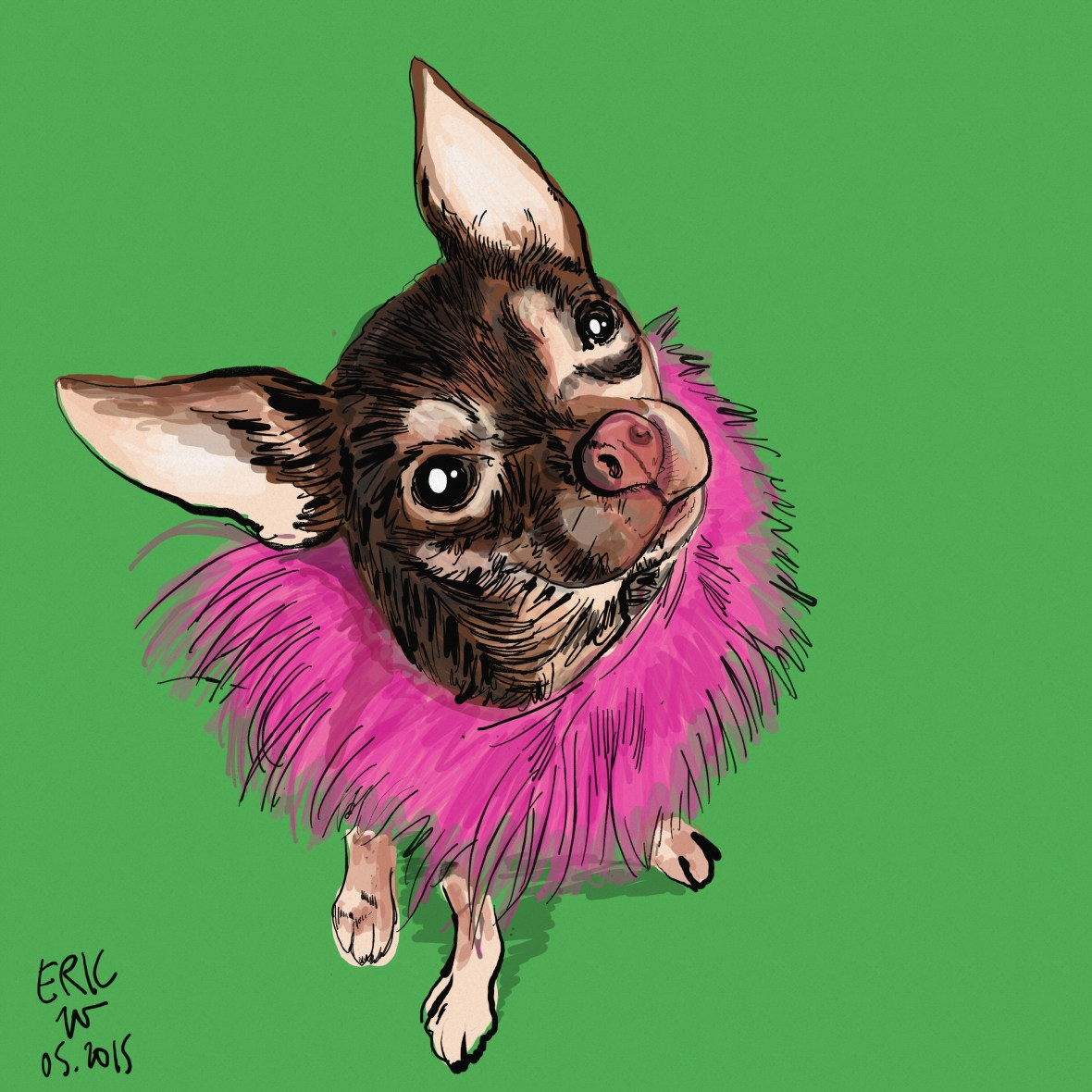 Dog drawing chihuahua