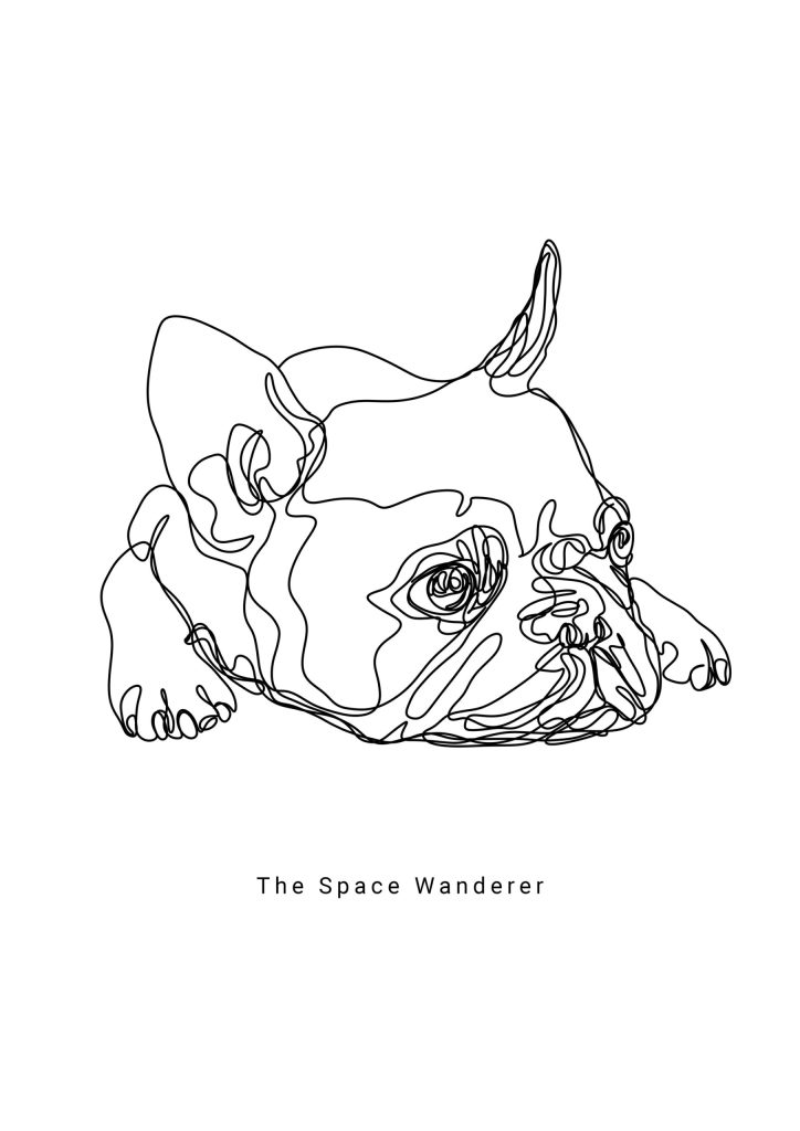 one line art french bulldog