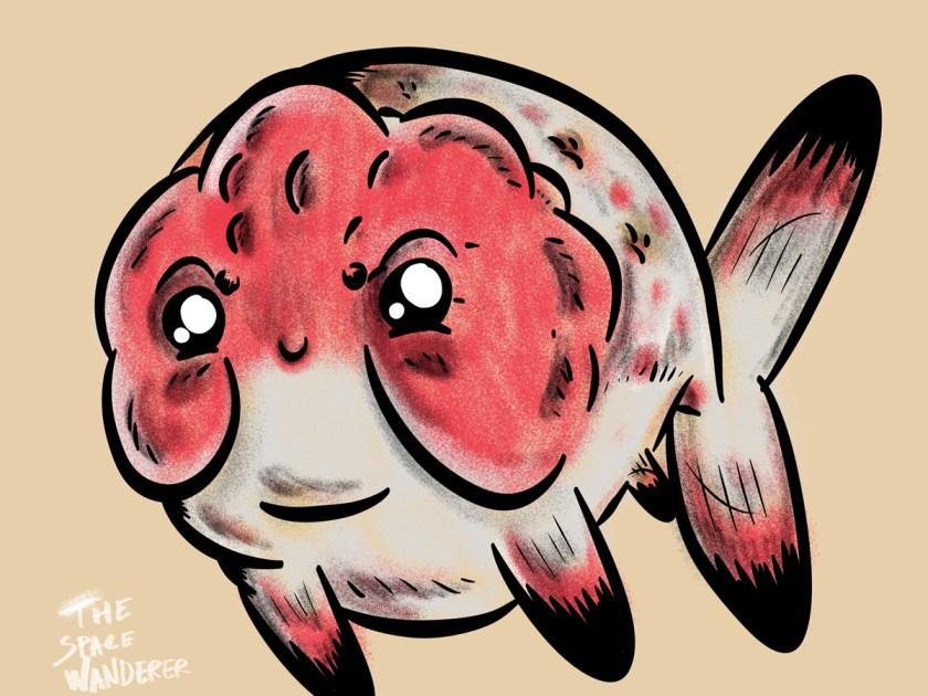 Ranchu Calico Goldfish Illustration