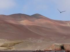 Strange hues on the mountainside