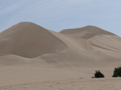 Towering sand dunes
