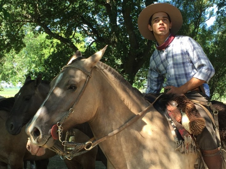 Guacho and horse