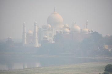 Taj looking very floaty and fairytale