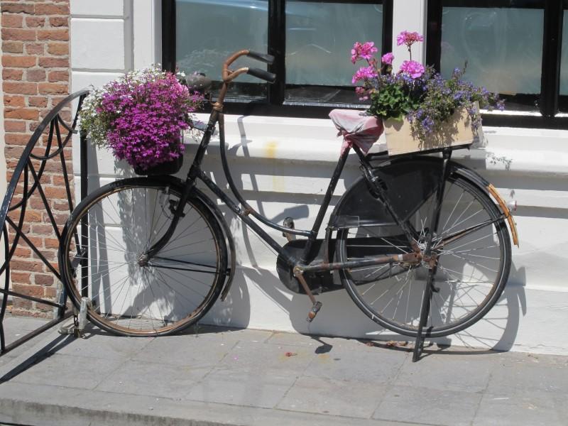 Oma fiets ('granny bike') used for ornamental purposes