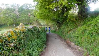 Camino countryside