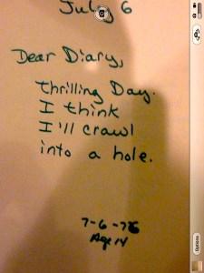 Bully Diary 3