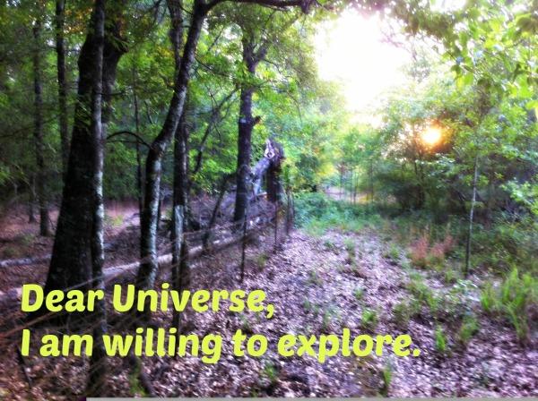 Willing to explore
