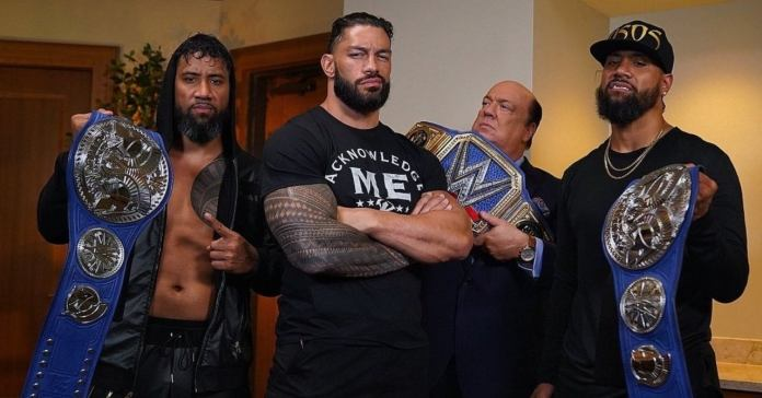 the bloodline stable