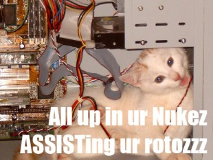 Cat_in_Computerzzz