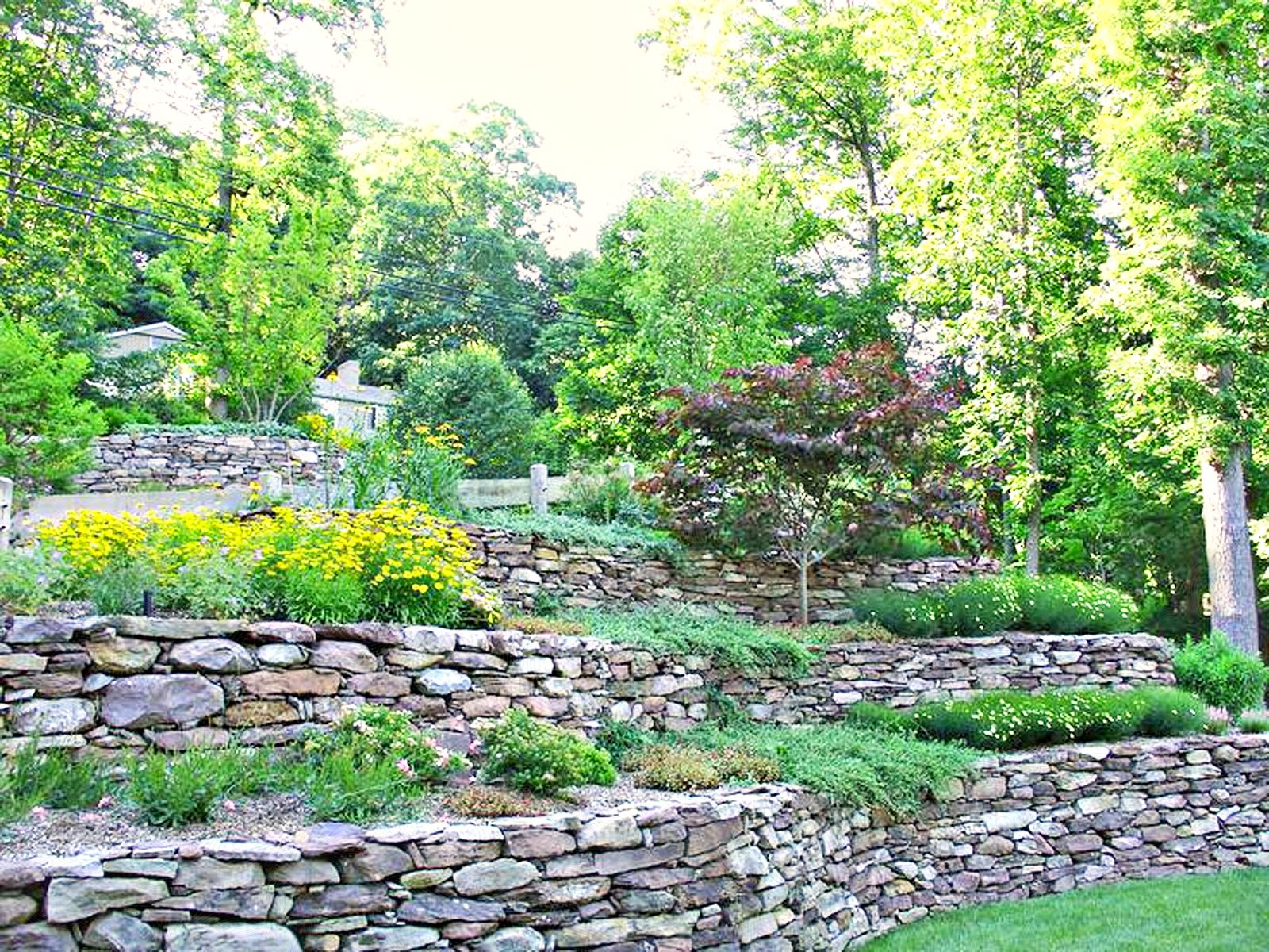12 hillside landscaping ideas to