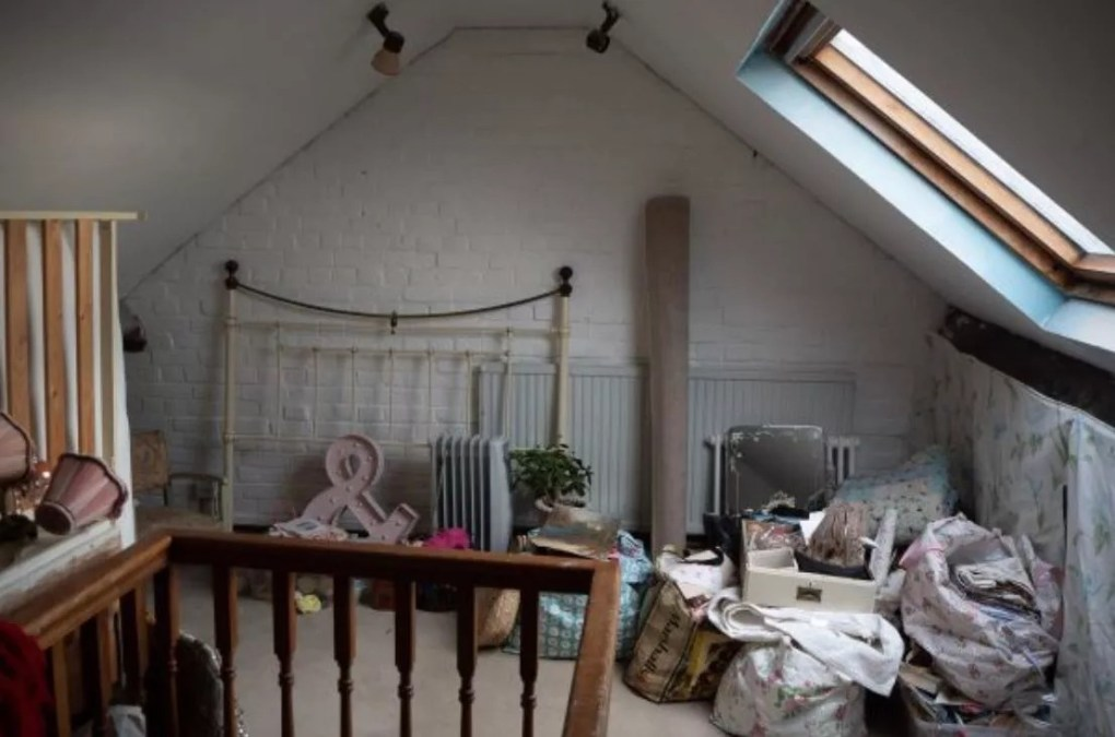 Attic storage space with white walls and skylight.