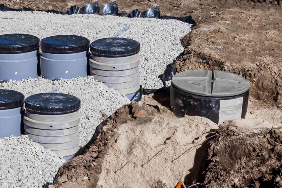 Plants Safe To Grow Over Septic Tanks And Drain Fields