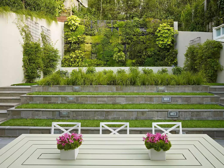 Moss Wall in Backyard