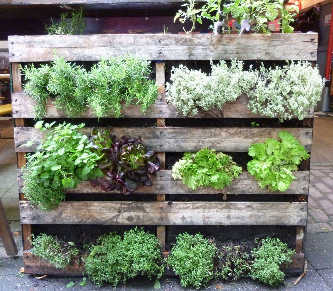 9 Creative Vegetable Garden Ideas