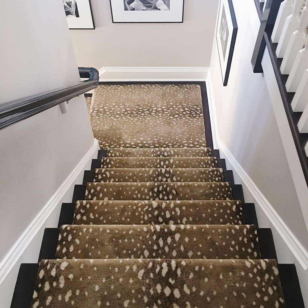13 Best Carpet Trends For 2020 | Printed Carpet For Stairs | High Traffic | Gray | Karastan Patterned | Georgian | Middle Open Concept