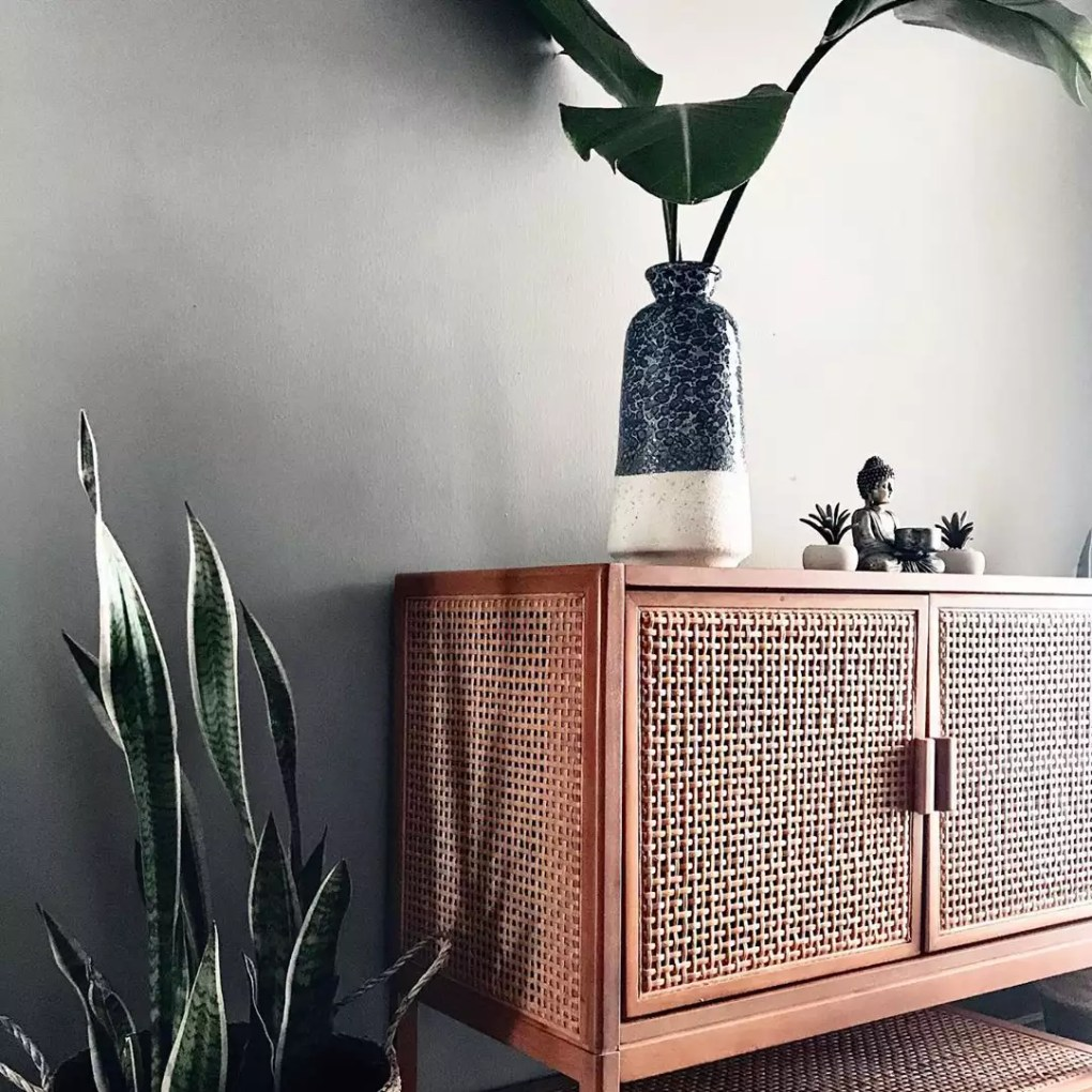 plants on a side table