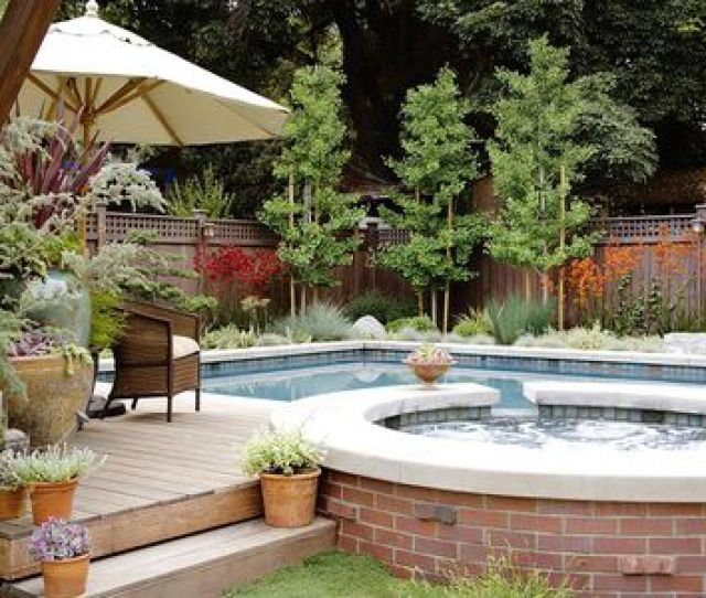 Pots Surrounding Backyard Pool