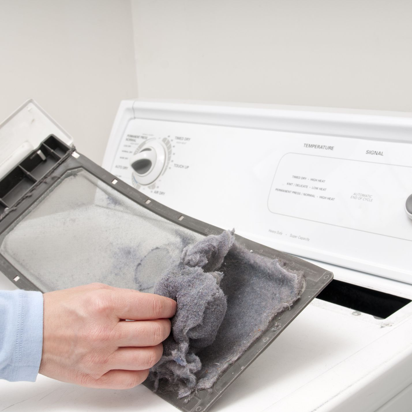 6 Creative Ways To Reuse Laundry Dryer Lint
